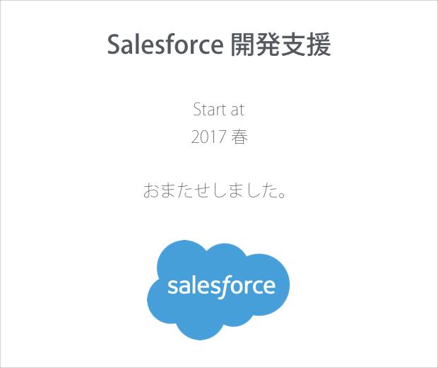 Salesforce 開発支援